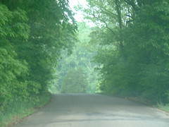 Heading Through that Hole in the Trees (riffsyphon1024) Tags: party kentucky fortcampbell fletchersfork