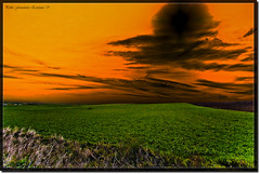 Tierras Salmantinas (_Hadock_) Tags: desktop windows sunset wallpaper sky orange verde green clouds photoshop sunrise de macintosh atardecer photo mac nikon foto screensaver background osx creative 7 sigma commons clauds leopard cielo nubes xp linux vista fields gran salamanca 1020mm incredible angular unix naranja fondo toro escritorio campos siete pradera pantallas salva cookin boveda filtro nuves increible walpaper salvapantallas d80 comons ltytr1 vosplusbellesphotos