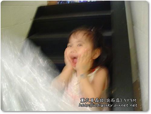 新竹薰衣草森林(尖石)-120