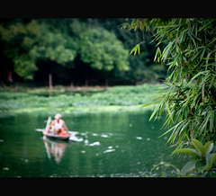 A Green Friday~ (Vu Pham in Vietnam) Tags: reflection green landscape landscapes movement fishing asia southeastasia vietnamese dof bokeh candid peaceful tranquility bamboo vietnam dailylife tre hue vu canoneosdigitalrebelxt sampan indochina 光 hué ベトナム sampans 色 imperialcity việtnam 越南 sông xanh huế เวียดนาม câytre 베트남 huecity câucá cốđô thurathienhue kinhđô raininvietnam tâylộc ôngláiđò thànhhuế commentwithimageswillbedeletedsosorryforthis