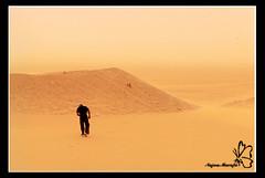 Lost ..... !! (Najwa Marafie - Free Photographer) Tags: by lost desert finepix fujifilm kuwait 2009 the najwa salmi s5pro nonoq8 marafie alsalmi