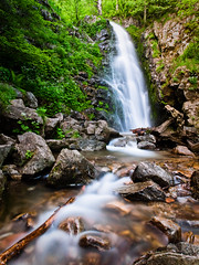 Where the Water Flows (andywon) Tags: plants green nature water leaves germany landscape deutschland waterfall rocks stream wasserfall schwarzwald blackforest todtnauberg badenwrttemberg todtnau blackforestwaterfalls