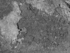 texture.beach2 (martisimas) Tags: blackandwhite bw texture beach nature rock grit gray free rough liemurloft