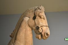The British Museum (John-Starnes) Tags: horse greek greece britishmuseum