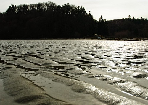 Dash Point Ripples