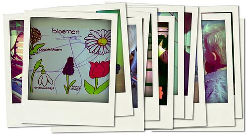 .2oo7.bloemen leren
