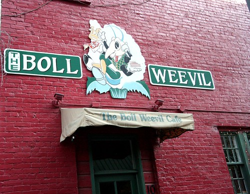 Boll Weevil Cafe'  On the Levee in Augusta Ga