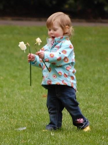 Wow! Daffodils!