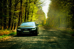 Bosse (rasenkantenstein) Tags: road trees light tree green art nature car composition forest magazine germany landscape design spring ad magdeburg commercial bosse dust audi gravel advertisment sachsenanhalt rasenkantenstein