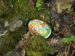 Hunt Easter Bunny Eggs in Norwegian Woods #5