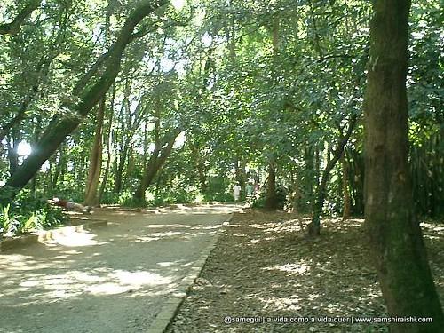 Parque da Independência por você.