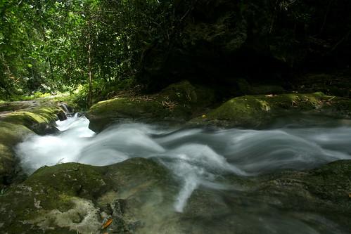 downstream rush