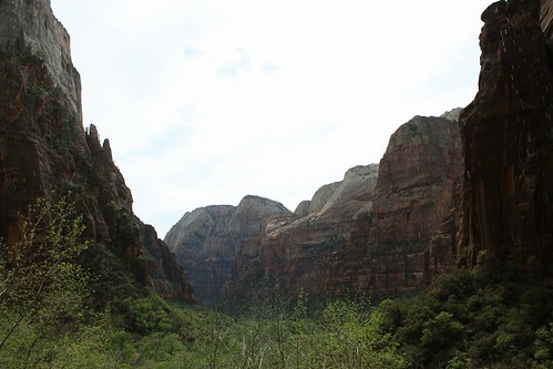 Weeping Rock view