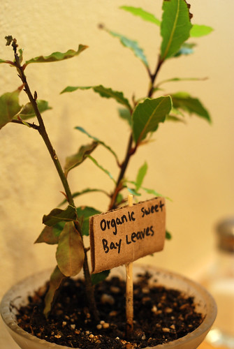 Homestyle Bay Leaves