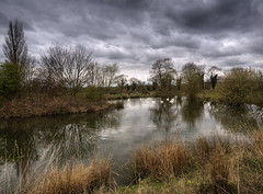 England: Northamptonshire - Gray Day Pond (Tim Blessed) Tags: uk sky nature water clouds ilovenature landscapes countryside swan scenery lakes ponds supershot abigfave anawesomeshot aplusphoto singlerawtonemapped
