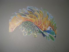 Macaw (keepinsidethelines) Tags: macaw artworkbyjessknowles