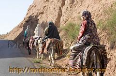 Tribe of Iran   56 (Mohsen Moossavi  1) Tags:
