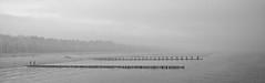 Fog II (mbromberger) Tags: people blackandwhite bw beach water weather fog clouds germany landscape grey coast boat couple solitude waves loneliness walk pano balticsea nebula shore poles ostsee tristesse zingst printsavailable pentaxk10d pentaxda1645mmf4 vorpommerscheboddenlandschaft artflakes