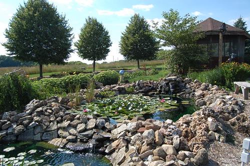 Koch Pond