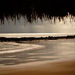 Ocean rain. thumbnail