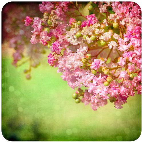 Pink + Green = Happy