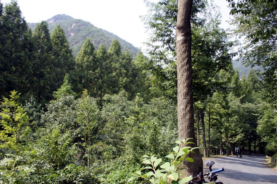 Jangtaesan provinvial park(2)