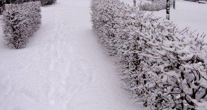 Schnee Berlin