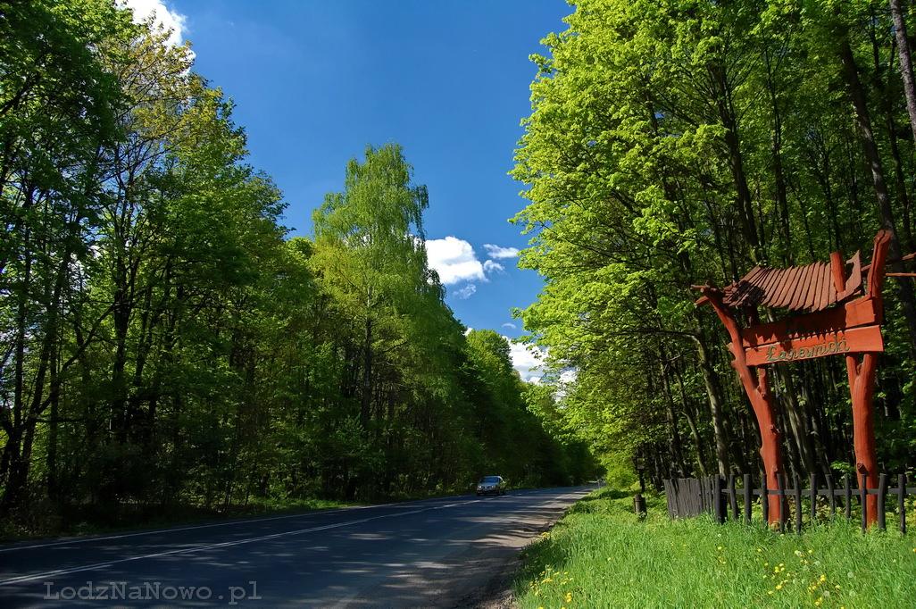Las Łagiewnicki wita