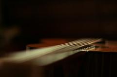 ~Juanita~ (Sandra_R) Tags: canon 50mm guitar f14 strings songs juanita littlemisspatriciasactions musicforoureyes