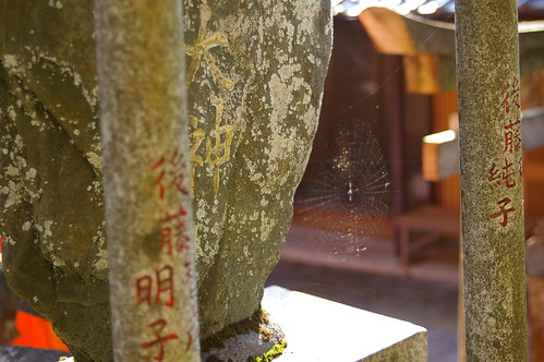grave and cobweb