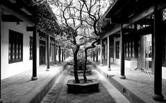 Courtyard (GavinZ) Tags: china travel bw building tree monochrome architecture canon eos blackwhite courtyard  academy f28 hunan bulding yuelu changsha    1755mm 40d canoneos40d