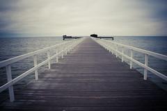 Empty (Rutger Blom) Tags: wood sea public water pier skne europa europe sweden path skandinavien pad zee sverige scandinavia malm vatten malmo trd hout scania hav zweden brygga resund skane gng malmo skanelan