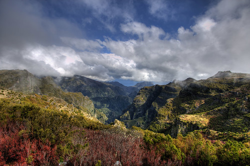 Madeira (Portugal), on the way to the Pico de Arieiro