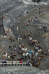 After the horseride it's time to exercise the llegs for the final bit to the Bromo crater.