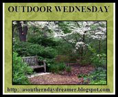 OutdoorWednesdayLogo