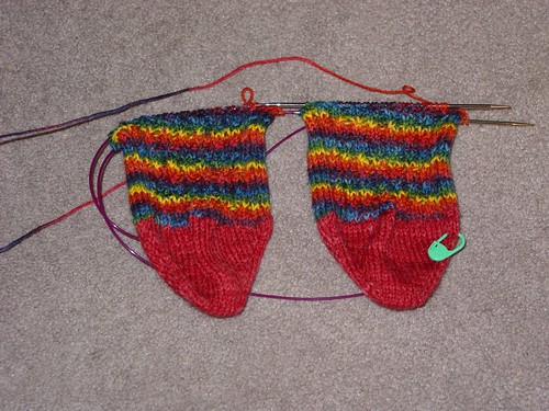 Paca Peds HT Socks (front)