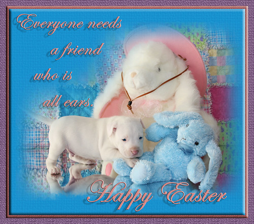 White Puppy Dog Kahuna Luna & Bunny Friends with Easter Holiday Greetings