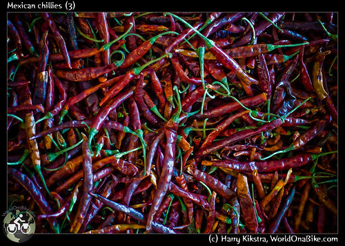Mexican chillies (3)