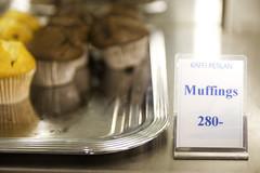 muffings (roboppy) Tags: iceland thepearl reykjavik perlan