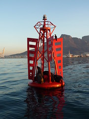 Seals on a buoy (Clover Summers) Tags: southafrica capetown 2009 buoyant