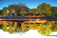 Reflection (Delfino Mattos) Tags: reflection water botanicalgarden londrina