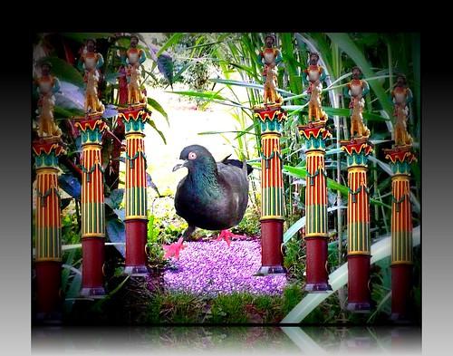 statues and garden bird