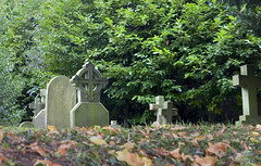 a quiet corner (Look at the view) Tags: autumn graveyard tombstones sulham