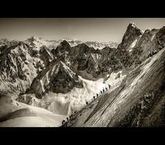 Way to Vallee Blanche B&W (Feo David) Tags: bw mountain snow france alps montagne alpes midi blanche chamonix freeride skier hautesavoie aiguille vallee