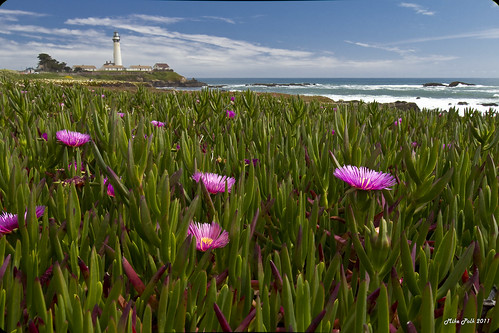 May-11-Pigeon Point-017