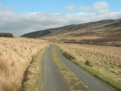 rural_dual_carriageway