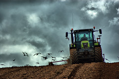 The Seed Drill (Dan Baillie) Tags: sky tractor field landscape scotland spring gulls seeds drill galloway dumfriesandgalloway puddock wigtownshire danbaillie bailliephotographycouk bailliephotography wigtownshirephotographer dumfriesandgallowayphotography