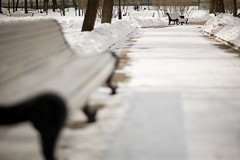 22 of march  -6C ({impossible princess}) Tags: park winter white snow bench dof moscow impossibleprincess bravolesfilles annaveselovaphotography