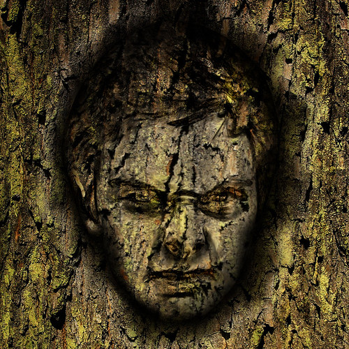 Man in tree bark with GIMP