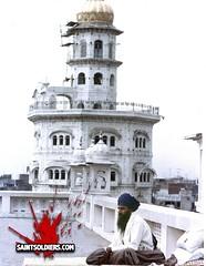 Baba Jarnail Singh Ji 09 (SaintSoldiers) Tags: ji seva 1984 sikh sant baba singh khalsa shaheed sikhi babbar singhs jarnail panth akj bhindranwale taksali panthic